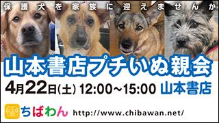 yamamoto01_320x180.jpg