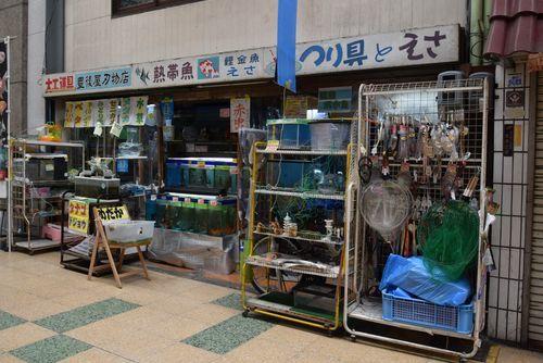 290226 伊田商店街17