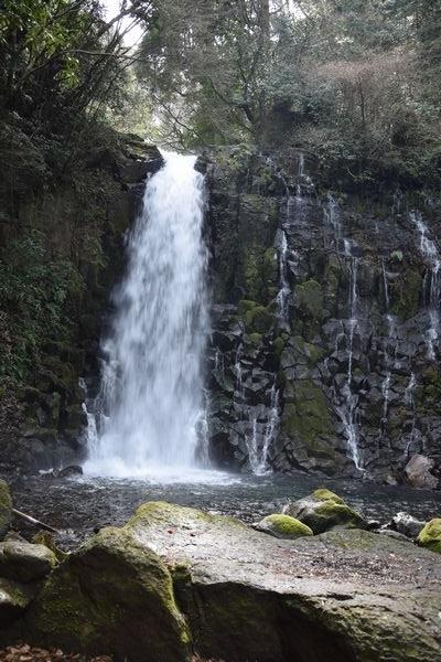 290319 水が流れる西原を散歩17