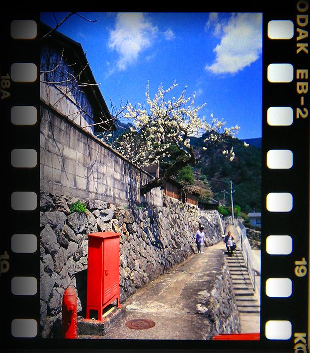 奈良県川上村白屋地区1702shiraya03.jpg