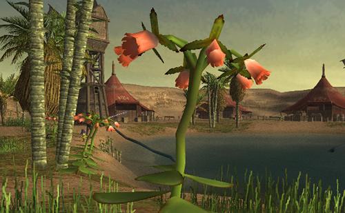 オアシスらしく植物も多い