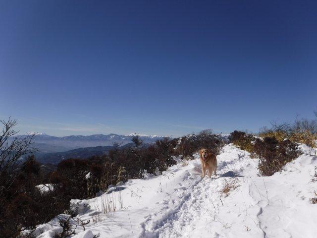 鷲ヶ峰 2017-1-28 044