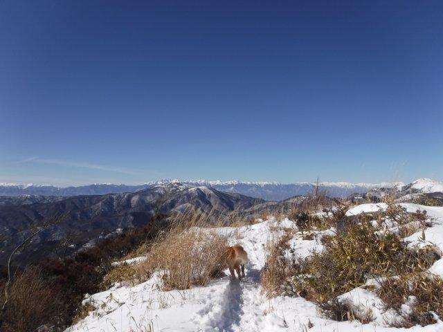 鷲ヶ峰 2017-1-28 054