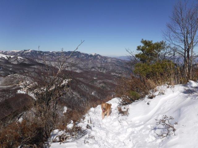 鷲ヶ峰 2017-1-28 055