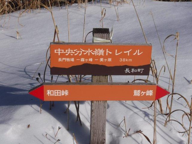 鷲ヶ峰 2017-1-28 073