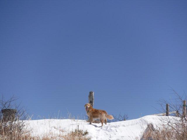 高ボッチ高原2017.3.11 表紙