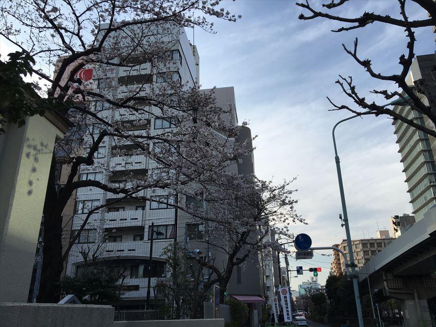 2017_04_05 374_R