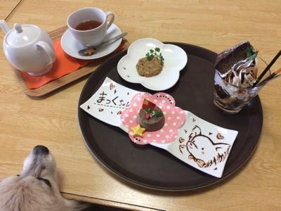 2017しろいぬカフェ2−2