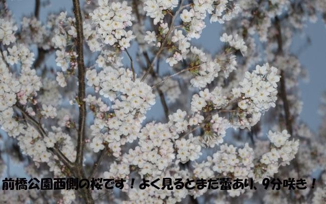 0A1A0663-876545-987654.jpg