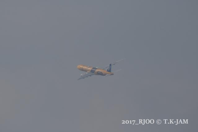 104A3133.jpg