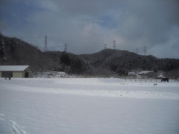 DSCN0594.jpg