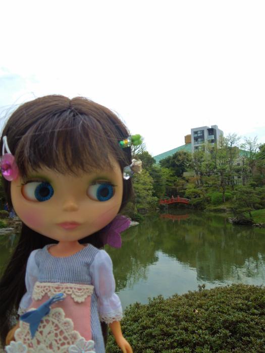 2016浅草サクラ4