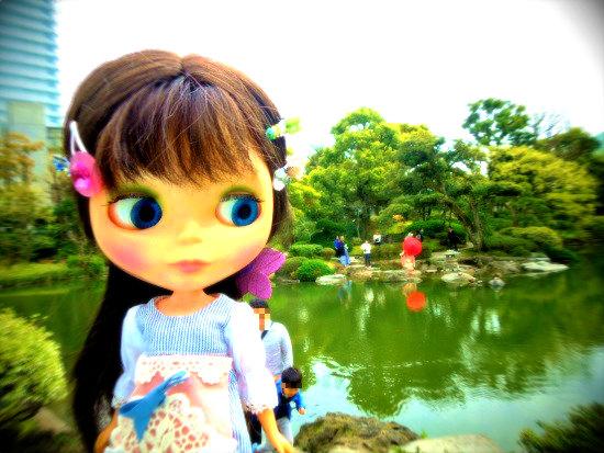 2016浅草サクラ4-1
