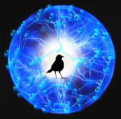 籠の鳥666