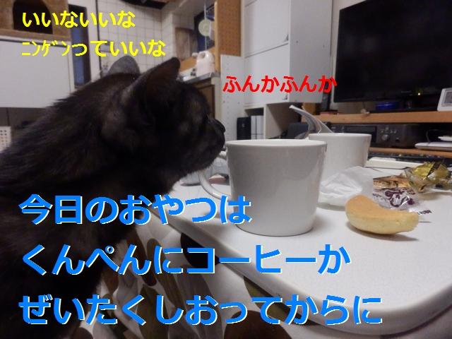 P2165961.jpg