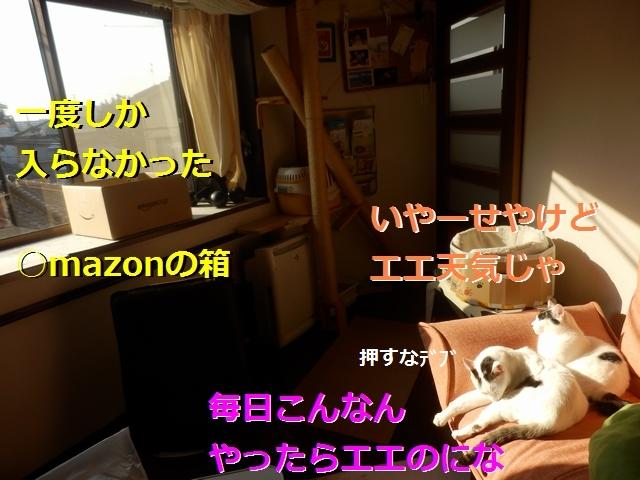 P2186012.jpg