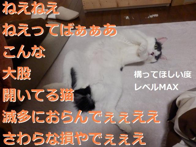 P2186039.jpg