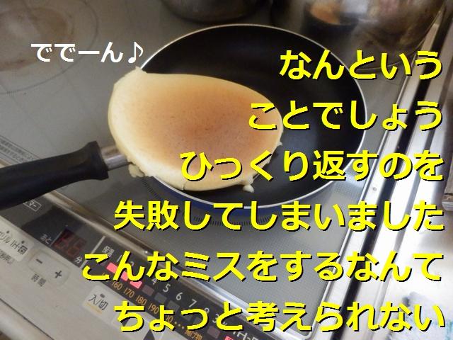 P4226323.jpg