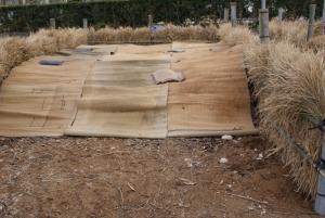 170322堆肥場D完成