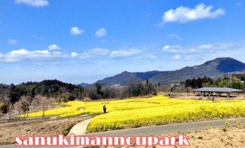 讃岐満濃公園