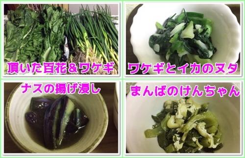 頂いたお野菜で