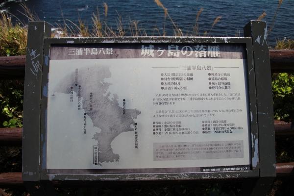 17城ヶ島2