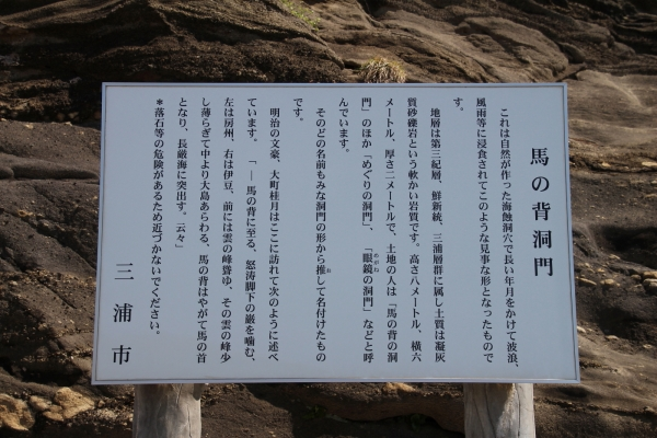 17城ヶ島11