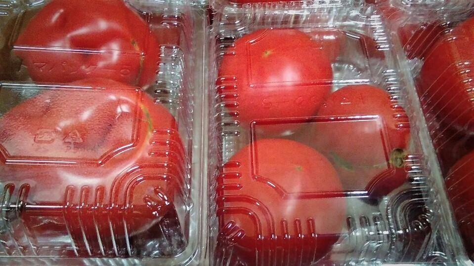 0415トマト
