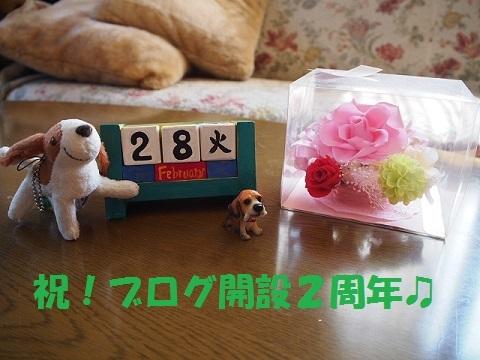 P2280149.jpg