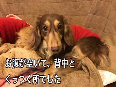 IMG_0284_convert_20170321071404.jpg