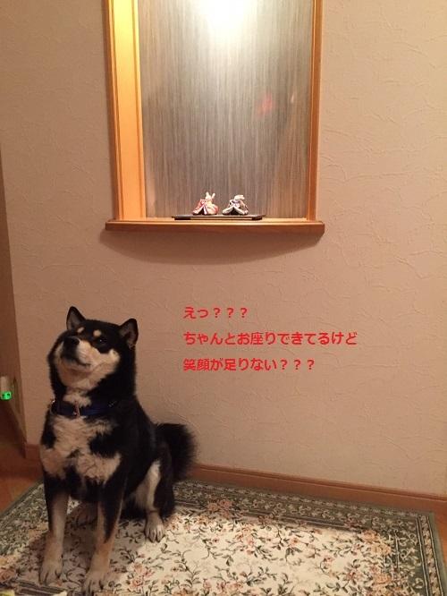 まるちゃん2017030302