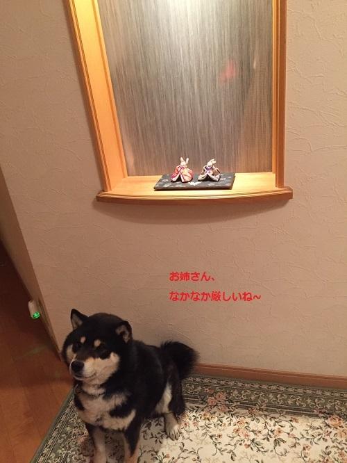 まるちゃん2017030303