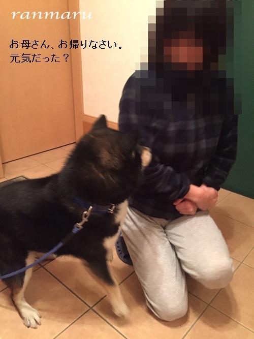 まるちゃん2017041001