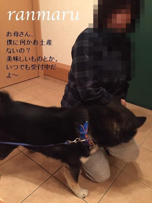 まるちゃん2017041002