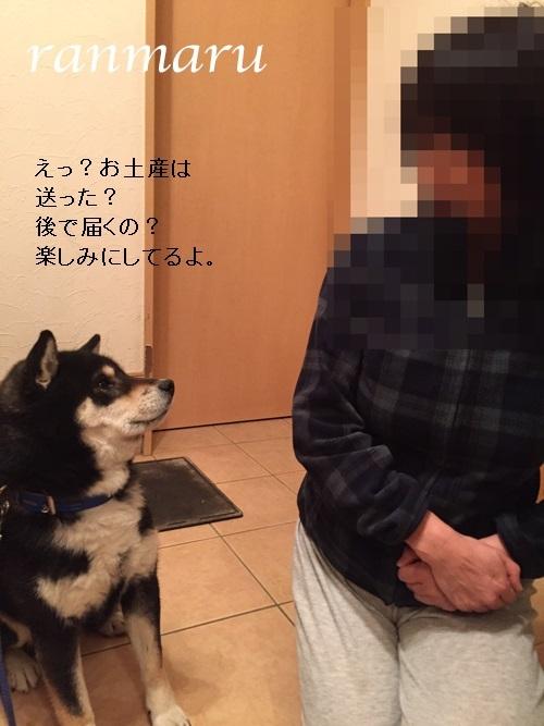 まるちゃん2017041003