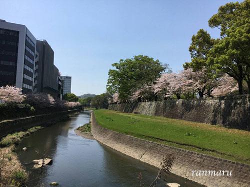 まるちゃん2017042103