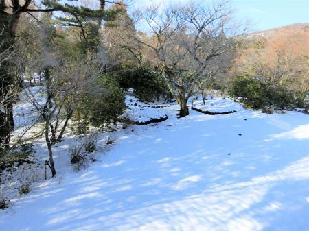 箱根 3月の雪1
