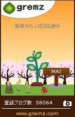 桜咲いたグリムス