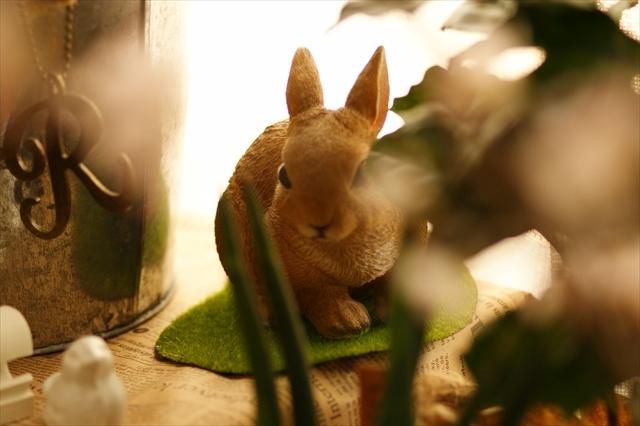 啓翁桜-2 後ろのウサギ