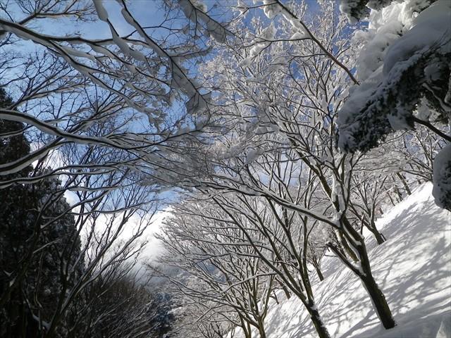 雪の英彦山へドライブ-28