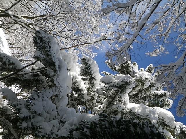 雪の英彦山へドライブ-29