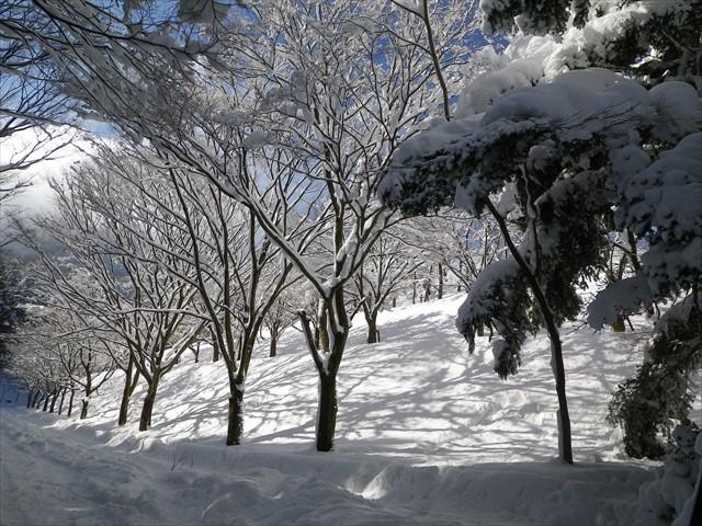 雪の英彦山へドライブ-30