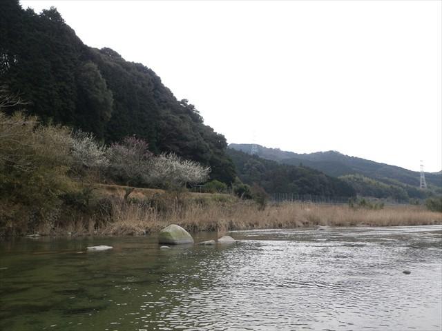 祓川 ほたるの里公園-2