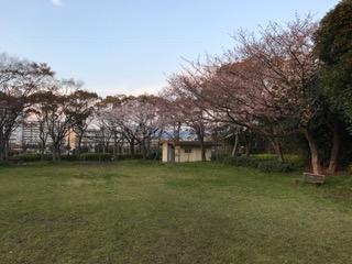 本城東公園2