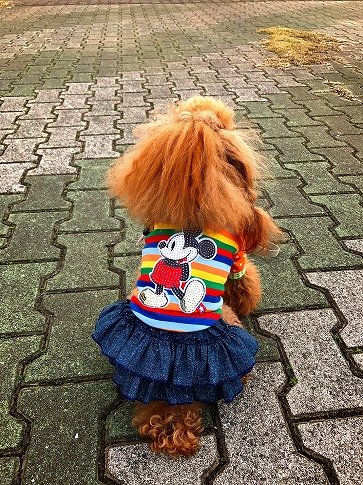 リコちゃん キラキラMickeyTシャツ④