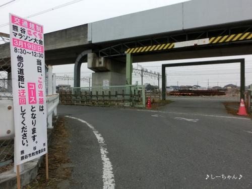 さくらマラソン2017_02