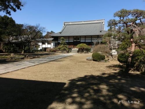 国済寺の梅_05