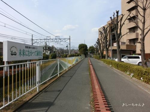 旧日本煉瓦製造株式会社 専用線跡_01