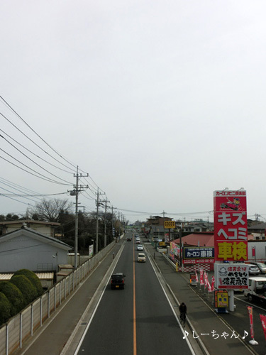 旧日本煉瓦製造株式会社 専用線跡_04