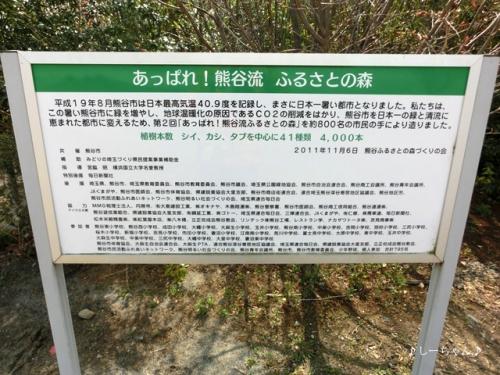 熊谷さくら運動公園 #3_03